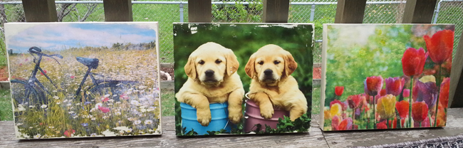 3 frames650